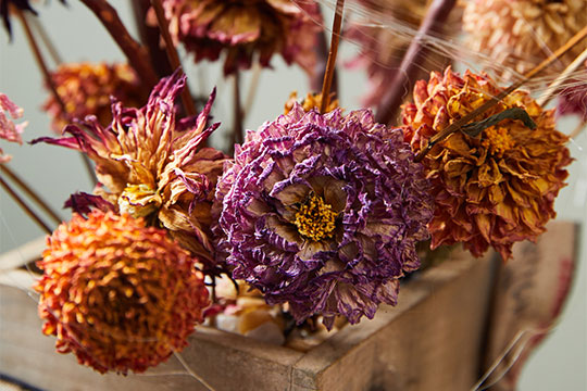 Dried Dahlia Halloween Arrangement