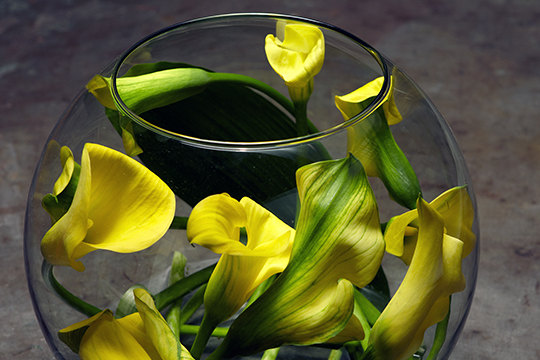 Flower Lesson - Calla Lily Bubble Bowl